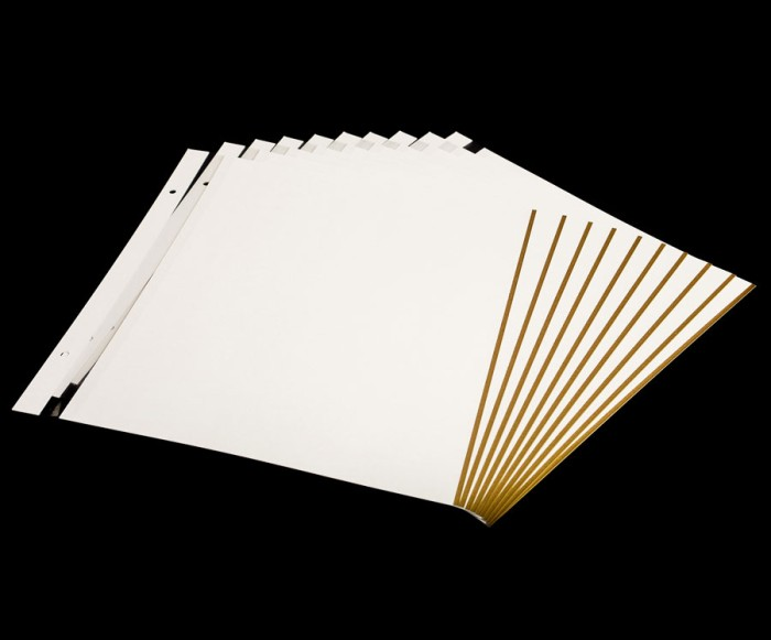 Self Adhesive Album Extra Pages - 10 Sheet Refill Pack